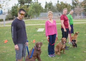 Feet and Paws_Hightlights_Dog Training Classes in Santa Monica_Group Class