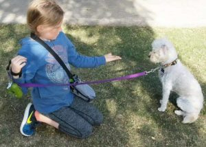 Feet and Paws_Hightlights_Dog Training Classes in Santa Monica_Class