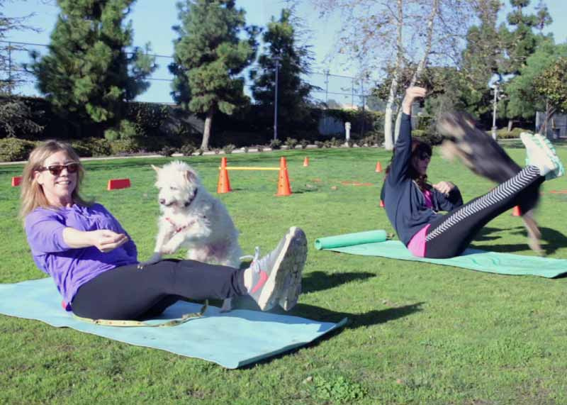 Feet and Paws_Hightlights_Fitness Classes With Your Dog_Have Fun Working Out With Your Dog B