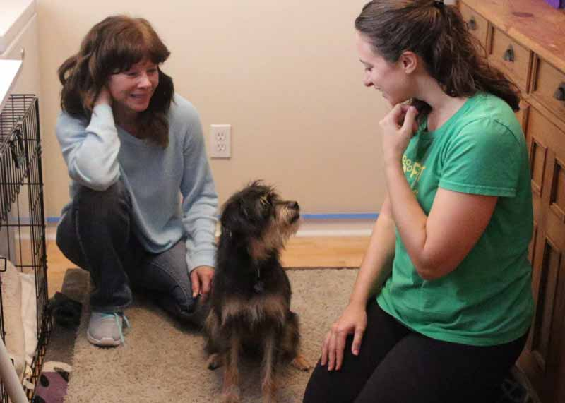 Feet and Paws_Hightlights_Private Dog Training_Time Important