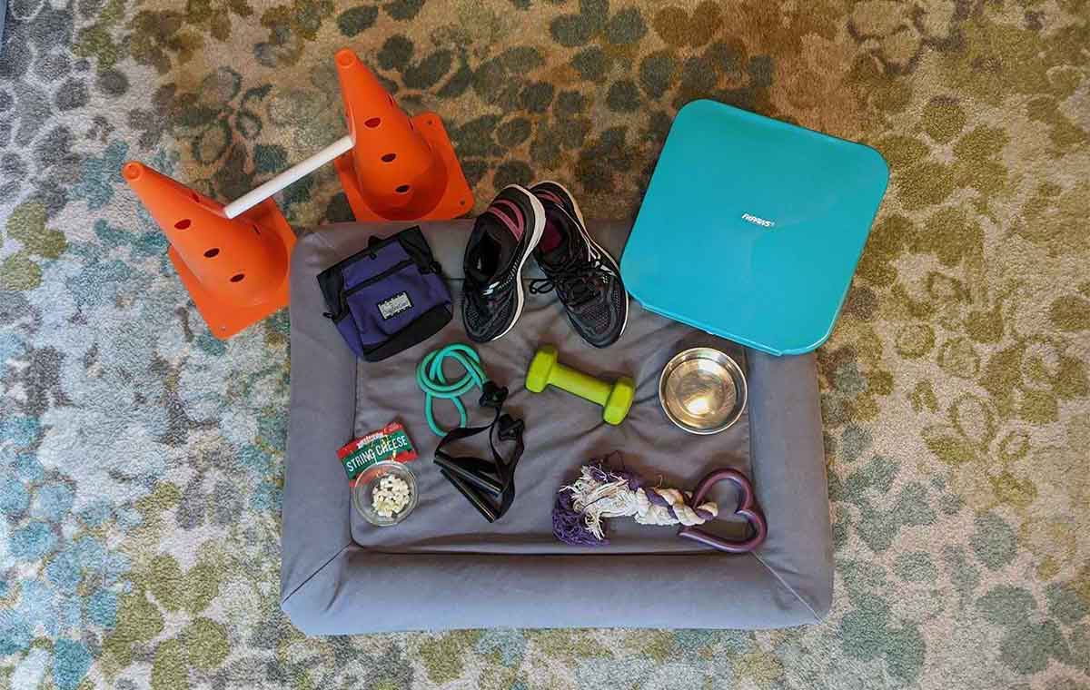 Canine and Human Fitness Equipment Checklist