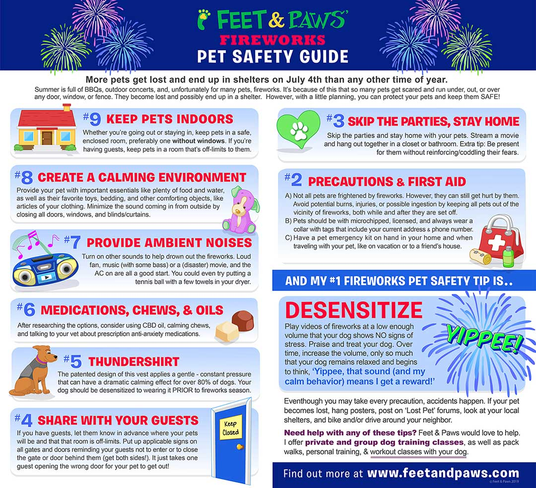 Pet Safety Guide Fireworks Edition