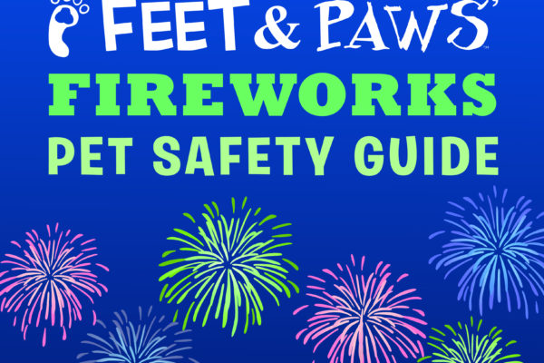 Protect Pets From Fireworks