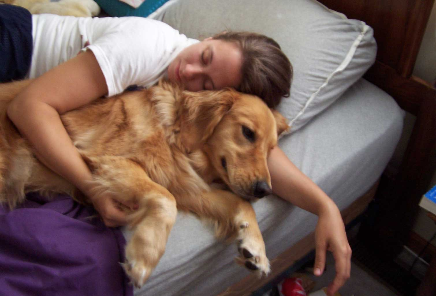 cuddling with ginger the golden retriever