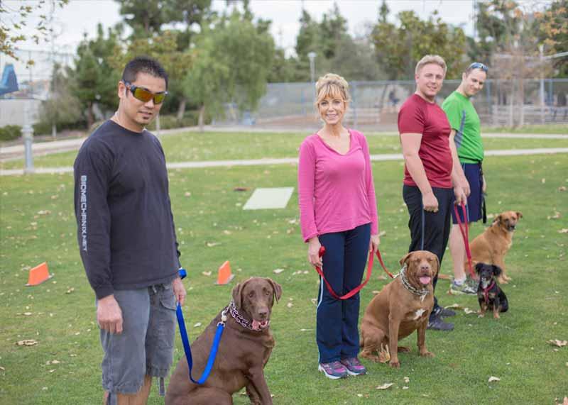 Dog Training Classes Santa Monica