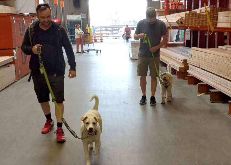 Pup Crawl About Town in Home Depot