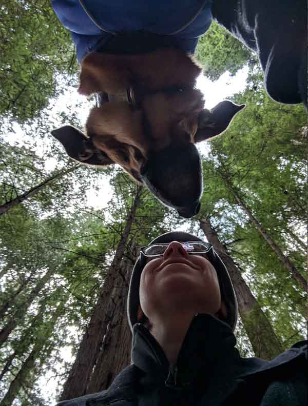 Avenue of the Giants With My Dog While On Road Trip