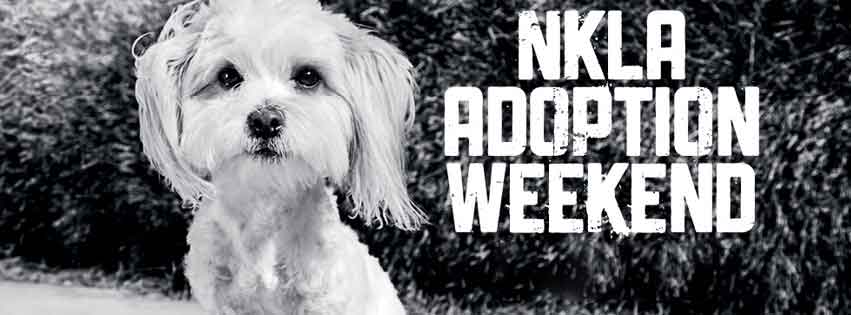 NKLA Adoption Weekend