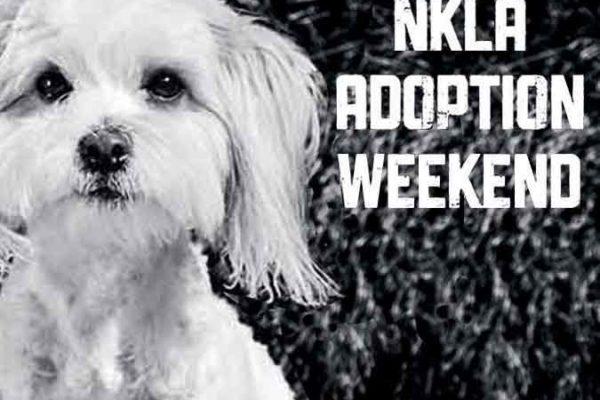 NKLA Adoption Weekend