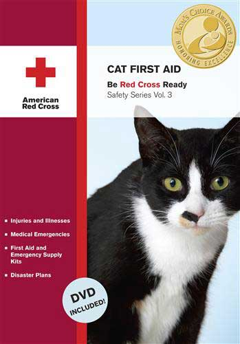 Cat First Aid and Pet Emergency Preparedness